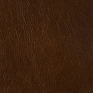 Intense Chestnut leather swatch