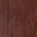 Roasted Coffee leather swatch