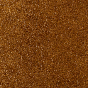 Wholemeal Honey leather swatch