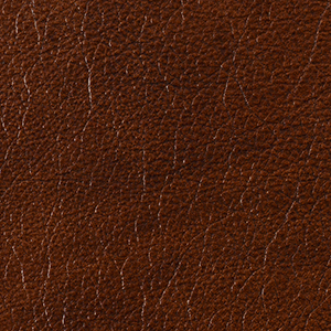 Hazlenut Truffle leather swatch