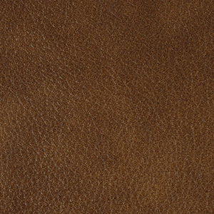 Vintage Tan leather swatch