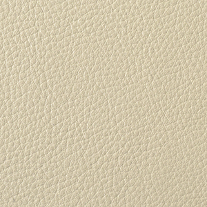 Parchment leather swatch