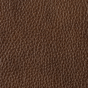 Truffle leather swatch