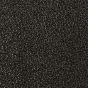 Cafe Noir leather swatch