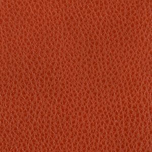 Tango leather swatch
