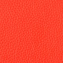 Blaze leather swatch
