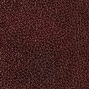 Shiraz leather swatch