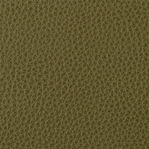 Olive leather swatch