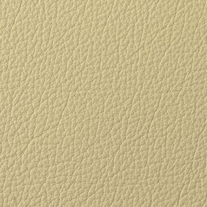 Ivory leather swatch