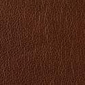 Chestnut leather swatch