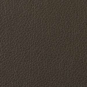 Mocha leather swatch