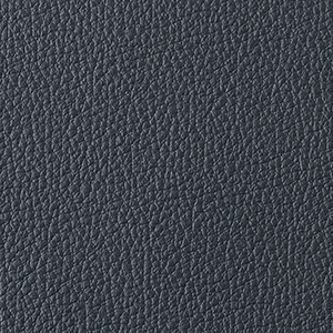 Atlantic leather swatch