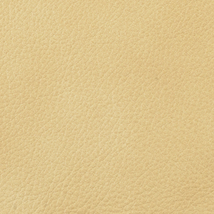 Stone leather swatch