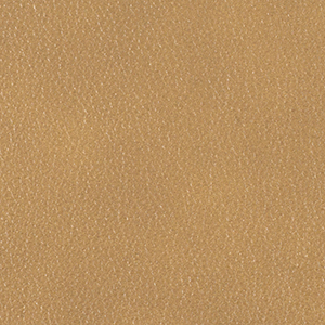 Biscuit leather swatch