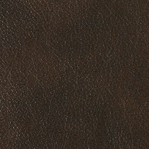 Bracken leather swatch