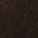 Oak leather swatch