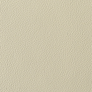 Cloud leather swatch