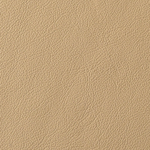 Taupe leather swatch