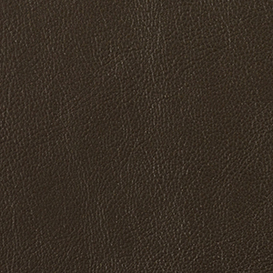Espresso leather swatch