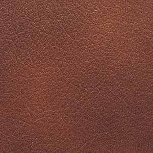 Chestnut swatch