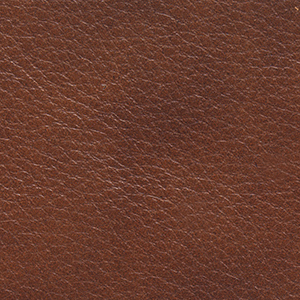 Coffee leather swatch