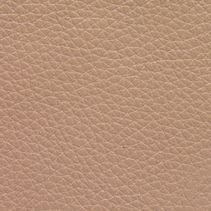 Taupe swatch